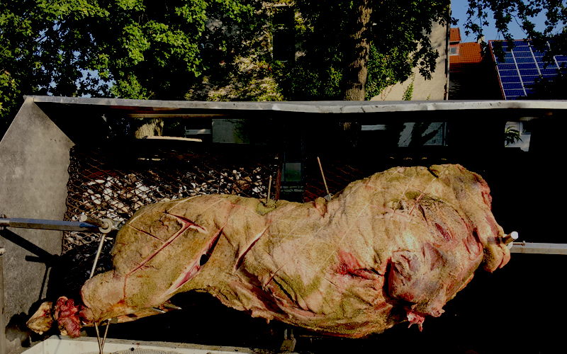 Rustikal-Lecker-Wildschwein-15